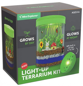 Mini Garden In A Jar That Glows @ Night